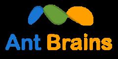 Ant Brains